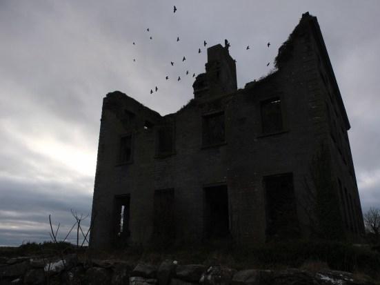 Ruine mit Vögeln